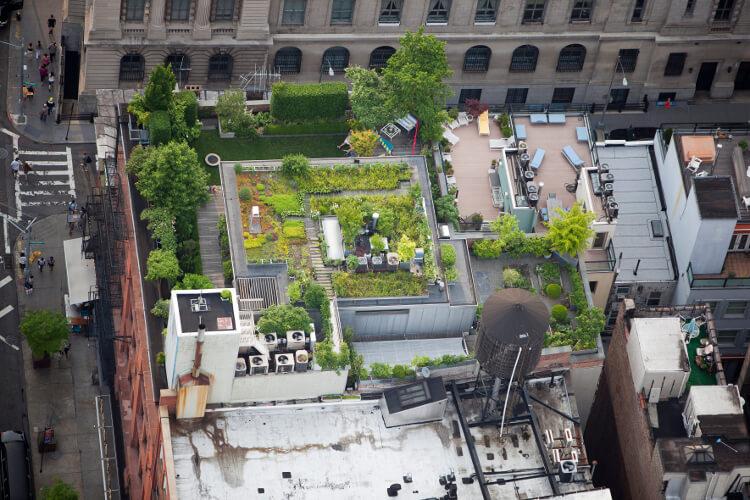 Das Dach als Nutzgarten (c) ALex MacLean / courtesy Schirmer/Mosel