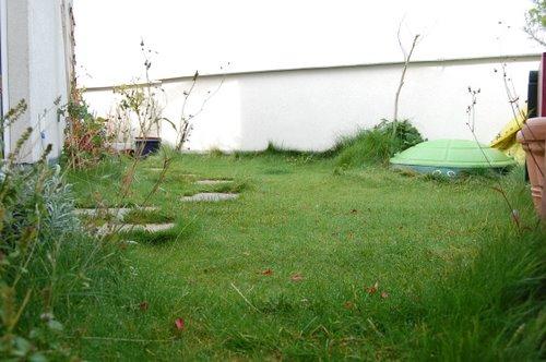 Dachgarten Stand 2007
