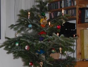 Das Leben des Christbaums nach dem Fest